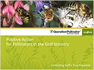 Operation Pollinator PowerPoint presentation