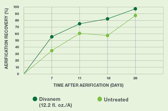 Divanem-Aerification