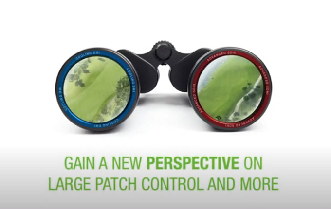 Ascernity Fungicide Gain a New Perspective on Large Patch Control.png