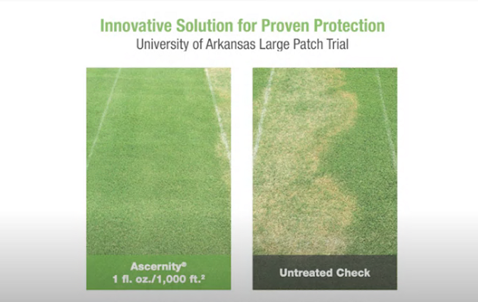Guaranteed Protection With Syngenta Large Patch Prevention.png