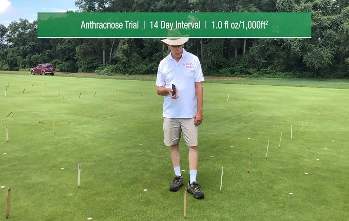 Control Anthracnose with Ascernity.jpg